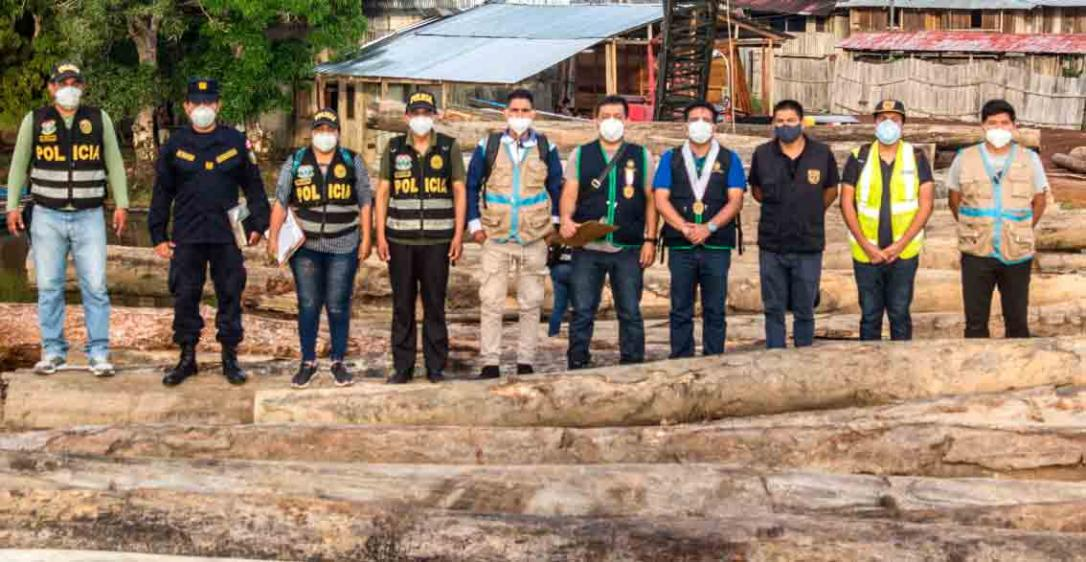 901m3 of logs seized in Mazán